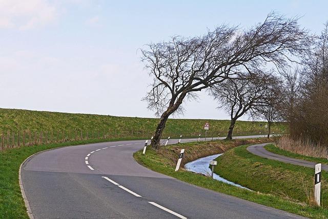 consejos para conducir con viento